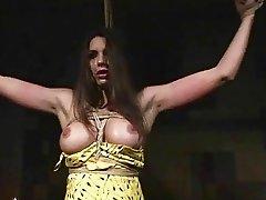 Zafira getting bondaged and punished