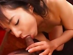asian anal doggystyle copulating