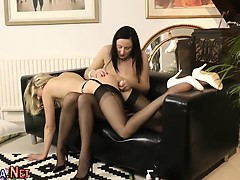 Stockings brit toys pussy