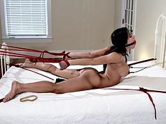 ChiChi Medina Bed Bound & Vibed