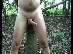 Renne Tree Bound