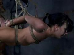 Submissive bitch is hanging from the ceiling bound by ropes