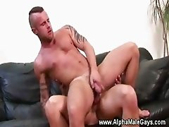 Stud rides a dick like a reversed cowboy