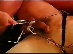 CBT I squeeze my bottom's balls using wood clamps.